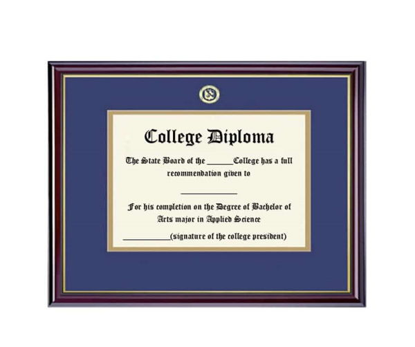 Diploma for Occupation
