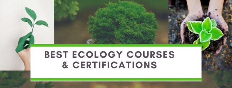 Ecology Certification courses online