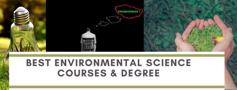 Environmental online study